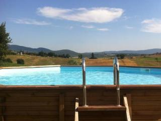 Mensanello 5+1 places apt with pool, Colle di Val d'Elsa
