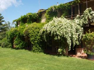 Holiday rental in splendid Tuscan farmhouse with swimming pool and B&B service, Pomarance