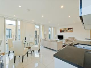 EUSTON HOUSE STUNNING APARTMENT, London