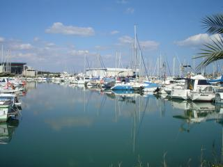 walk to the marina and check out the boats, book a trip, sip a cold beer at the snack bar....