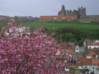 Abbey View Cottage, Whitby