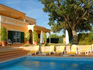 Big Villa with Pool &  tennis court, car and boatt, Quelfes