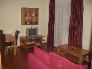 Bojurland - first floor with lift, Bansko