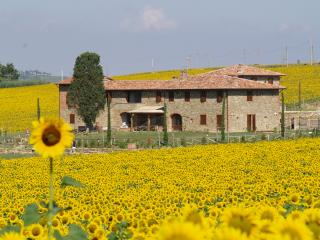 Country House, Paciano