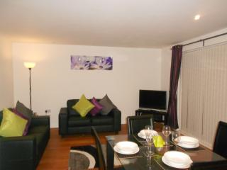 Millennium Coastal Apartment, Llanelli