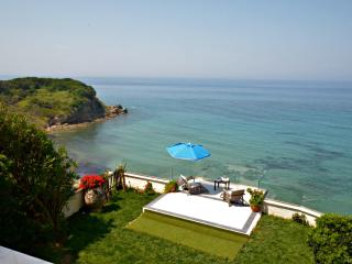 SEAHORSE BEACH VILLA, on the sea, pool & jacuzzi - Corfu vacation rentals