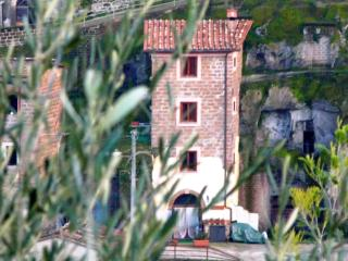 StoneTower Ancient Charming Quiet 1h from Rome, Vignanello