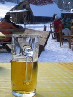 Imagine sitting on a bench drinking a ice cold beer, after skiing down the slopes, in February.