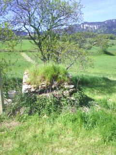 The old  well in field. [Not the house water supply!]