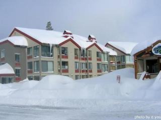 Sun Meadows Condo at Kirkwood Sleeps 9 ~ RA1483