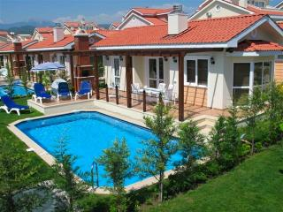 Luxury Villa with Private Pool, Yaniklar