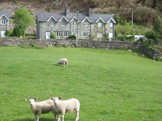 New Cottages, Penmaenpool