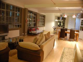 Amazing loft style flat with garden in London Zone