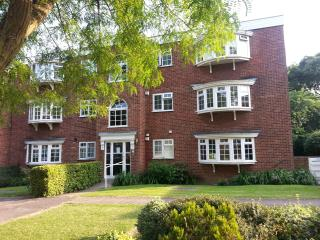 large family apartment up to 7, Londen