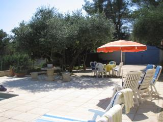Seating area under Olives