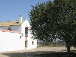 Holiday house for 6 persons, with swimming pool , in Sevilla - Ecija vacation rentals
