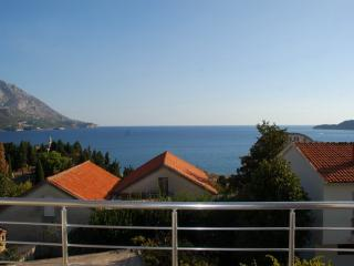 Apartments Veselin - 93261-A1 - Becici vacation rentals