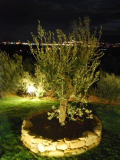 Enjoy the night lights of Assisi from the gardens