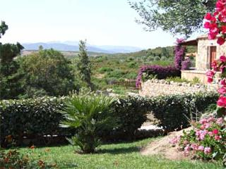 Another view from the terrace side facing the hills