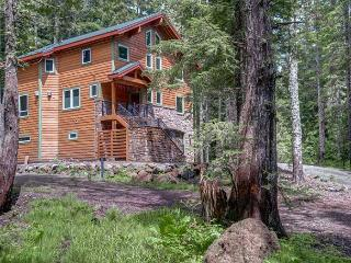Chalet am Berg - NEW! Fireplaces, hot tub, dogs ok - Mount Hood vacation rentals