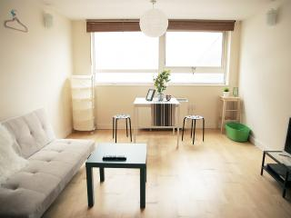 Cosy 1 Bed Home Zone 2 North London, Londres