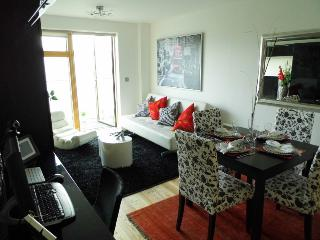 Luxurious and modern serviced flat, London