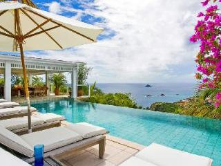 Blazing Oasis Villa offers lush tropical gardens and an infinity pool, Lurin