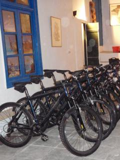 Bike hire and optional guided tours near by