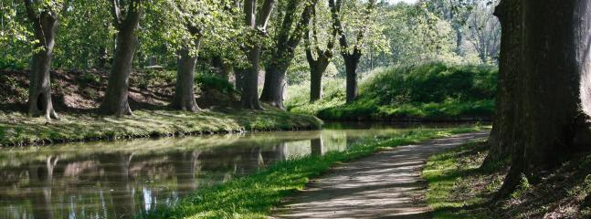 Go for a cycle or walk along Canal du Midi