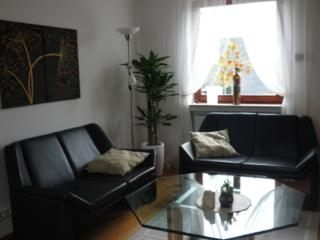 LLAG Luxury Vacation Apartment in Remscheid - contemporary furniture, backyard, terrace (# 1235) - Remscheid vacation rentals