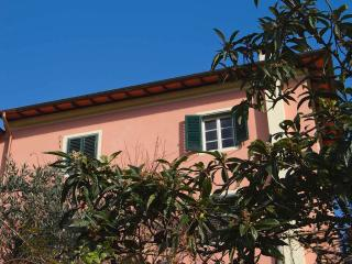 Double room in Tuscan ancient house, Coreglia Antelminelli