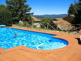 Tuscany 5 bedroom farmhouse with pool - BFY1315, Caprese Michelangelo