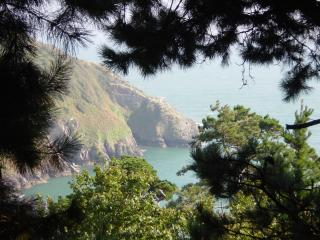 3 The Pines- holiday apartment with fab views, Kingswear