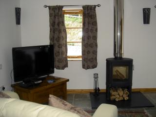 Watch tv in front of a log fire
