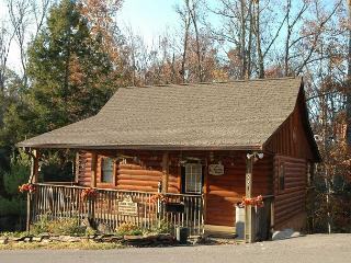 Charming Pet-Friendly 1 BR Studio Pigeon Forge Resort Cabin Near Dollywood, Sevierville