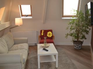 Apartment C close to beach and boulevard, Scheveningen