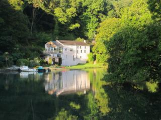 The Old Sawmills, Golant