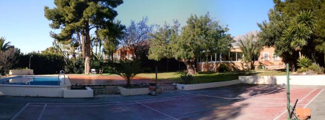 Panoramic view of our garden.