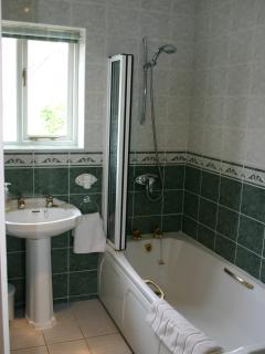 Easy to step into bath with shower over