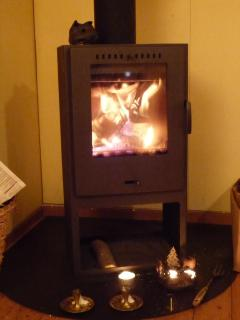 the windows of the woodstove gives full view on the flamesl