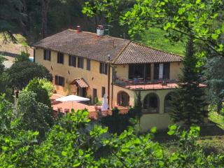 Tuscan holiday in majestic farmhouse, private outdoor pool and fishing lake, help prepare traditional Tuscan meals with international chef!, Florence
