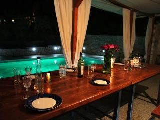 Holiday Villa with private pool, Slatine