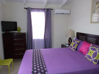 Hopeville Guest House 2 minutes drive from airport, Christ Church Parish