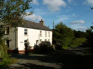 Bryn Marlais Cottage - Carmarthenshire vacation rentals