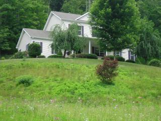Quiet B&B Mountain Retreat Near Asheville Action - Weaverville vacation rentals