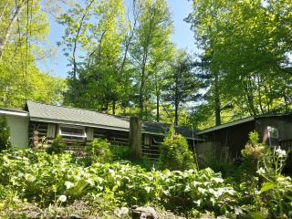 Painted Fern- Classic Log Cabin w modern amenities, Dingmans Ferry