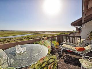 Excellence in Ecinitas - Incredible views w/ pool - San Diego vacation rentals