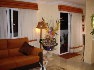 Wonderful Penthouse in Maspalomas - Maspalomas vacation rentals