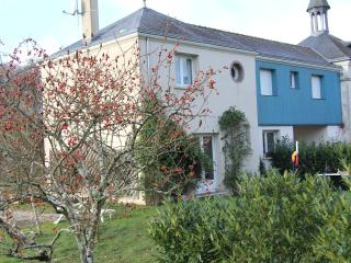 Gîte in the heart of the Loire Valley - Loir-et-Cher vacation rentals