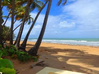 Spectacular Villa On Rio Mar, A Relaxing And Exciting Place!, Rio Grande